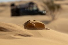 https://flic.kr/p/rQFJLo   Tunesia 2015: Micro Sandstorm   The fascinating movement of the dunes, small, but steady  steps make them wander constantly.