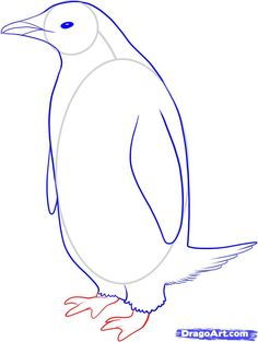 how to draw a penguin step 6