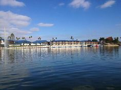 Lakehouse Hotel & Resort in San Marcos, CA - View of hotel from peddle boat on the lake... (80243310)