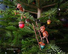 Galerie - Dubánci Mighty Oaks, Acorn, Elves, Terrarium, Christmas Ornaments, Holiday Decor, Autumn, Home Decor, Acorn Crafts