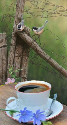 Amazing Nature, Morning Coffee, Creative Photography, Landscape Art, Tea Party, Landscape Artwork, Tea Parties, Paisajes