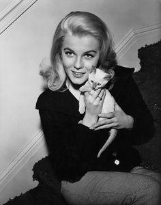 Ann Margret with her Siamese kitten