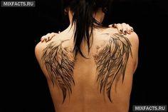 тату закрытые крылья