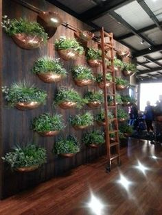 Vertical Gardens Marvelous Vertical Garden Ideas 112 - Once you've designed your garden, pick the plants that you want to grow during each season. There's no better solution than to bring a vertical garden. While arranging a vertical garden… Indoor Vegetable Gardening, Garden Soil, Indoor Garden, Indoor Plants, Organic Gardening, Balcony Gardening, Urban Gardening, Garden Plants, Gardening Tips
