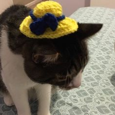 This ADORABLE hat was made specially by @maddyscatfanpage. Thank you SO much for supporting our cause with a #customdesigned hat no less! 😻🐾💛 #yellowhatsforcats #customdesign #crochetedhat #crochet #crochetlove #hatsandbows #hatsforcats #yellowhats #lovethebow #catlover #kittygram #catsofinstagram