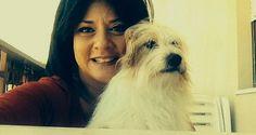 PERUGIA. Sportello a 4 Zampe, un presidio istituzionale dei diritti e tutela degli animali da salvar...