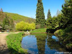 Manastirea Prislop Romania, Golf Courses