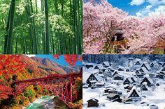 Image result for japanese seasons