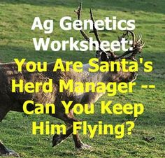 A very short blog.  There's a link to a 2 page worksheet on the basic principles of genetics and the application on Santa's Reindeer herd.  Can your students keep him flying? - OLT