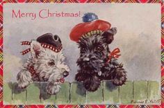 Scottie & WestieTerrier Tartan New Christmas Note Cards