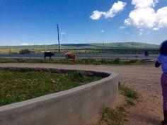 Driving from Nairobi to Loitokitok