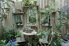 """SBG loves these """"windows"""" in the fence.  Great use of shutters, shelves and mirrors to suspend disbelief in a solid barrier."""