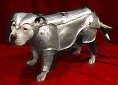 Knight in shinning armor. Of course, he's a pitbull!