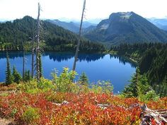 MT RAINIER - Summit Lake — kid-friendly FALL HIKE.  5.0 miles roundtrip.  1200 foot elevation gain.  Northwest Forest Pass required.