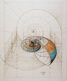 Rafael Araujo's hand-drawn Golden Ratio illustrations are a beautiful fusion of art with science. For the past 40 years, the Venezuelan architect and