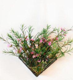 Esta lista de vasos prova o quanto plantas penduradas na parede podem ser charmosas, contemplando os mais diversos estilos de casa e morador
