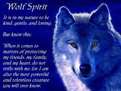 Native American Wolf Spirit - Bing images