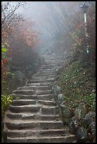 Stairs leading to grotto, Seokguram. Gyeongju, South Korea....when I first saw the picture I thought... I've been there...then I read where it is...my mother and I climbed these steps together