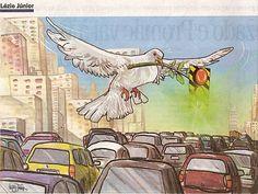 paz no transito