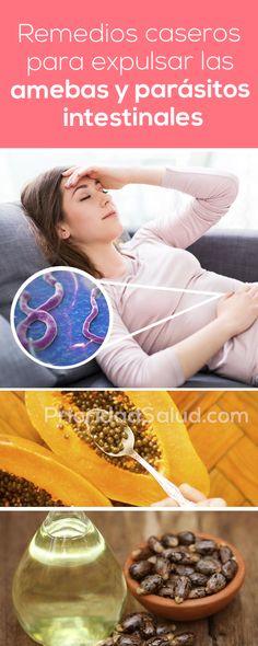 Remedios caseros para expulsar las amebas y parásitos intestinales