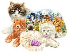 Sunsout Puzzles 1000 Piece Puzzles Animal Puzzle Shaped Jigsaw Puzzles Kittens #SunsOut