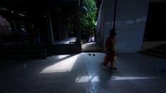 https://flic.kr/p/RpVR5Y | magic of morn | a spiritual morn moves over the kali mondir (temple) complex -  at shorawardi uddan , dhaka Copyright :Abdul Malek Babul FBPS . Cell:( +880) 01715298747 & 01837805350 E mail : babul.photopassion@gmail.com bimboo.babul@yahoo.com www.flickr.com/photos/55321771@N08
