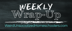 100 Hands-On Activities for Middle School and High School - Weird, Unsocialized Homeschoolers