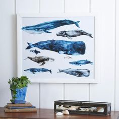Whale Study Framed Graphic Art   Framing intricate watercolor depictions of a variety of whales, this captivating framed print lends seafaring style to your decor.