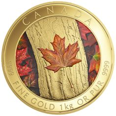 One Kilogram Pure Gold Coloured Coin - Maple Leaf Forever - Mintage: 10
