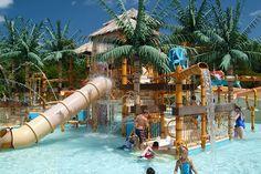 Waterpark Delight  