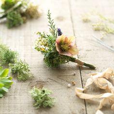 Seasonal spring buttonholes by The Irish Flower Farmer Wedding Bouquets, Wedding Flowers, Flower Farmer, Irish Wedding, Buttonholes, Greenery, Seasons, Spring, Plants