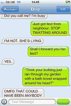 This could be a text between my son and his soon to be dog!