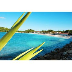 Amazing view from #GrandPineappleAntigua beach