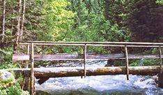 Kleine Brücke im Naturschutzgebiet Koppenwinkl. (© Seilbahnholding) Garden Bridge, Outdoor Structures, Nature Reserve, Tourism, Vacation
