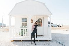 she shed she shed home office pink and emerald decor joss and main What Bonsai Supplies Wil Shed Building Plans, Diy Shed Plans, Storage Shed Plans, Shed House Plans, Building Homes, Shed Office, Office Den, Shed Interior, Interior Ideas