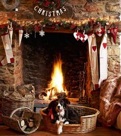 Christmas fireplace with stockings and dog