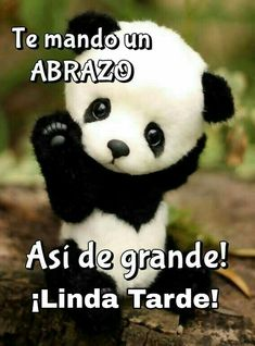 New Birthday Love Qoutes Faces Ideas Good Morning Snoopy, Good Morning Good Night, Beautiful Morning Quotes, Good Morning Quotes, Night Quotes, Spanish Greetings, Funny Spanish Memes, Spanish Quotes, Qoutes About Love