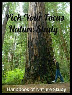 Handbook of Nature Study: Outdoor Hour Challenge #4: It Is Coming Into Focus