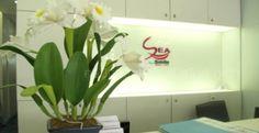 Bangkok Smile Dental Clinic in Phuket http://bodytravel.com/body-travel-clinics/bangkok-smile-dental-clinic-phuket-phuket