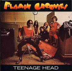 Flamin' Groovies - Teenage Head (1971)