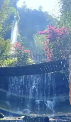 Waterfall Wallpaper, Ocean Wallpaper, Nature Wallpaper, Beautiful Photos Of Nature, Beautiful Places To Travel, Best Aquarium Fish, Waterfall Scenery, Valley Of Flowers, Paradise On Earth
