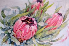 Protea painting by Ellie Eburne. 'Three's a Crowd' Oil on canvas x Protea Laurifolia. Available for Sale Protea Art, Protea Flower, Watercolor Flowers, Watercolor Art, Painting Flowers, Flower Art, Art Flowers, Australian Flowers, Art Photography