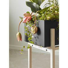 Design House Stockholm Botanic Stand plantenbak | FLINDERS verzendt gratis Good House, Stockholm, Planter Pots, House Design, Architecture, Home Design, Plant Pots, Home Design Plans, Design Homes