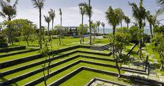 Neatly terraced lawns