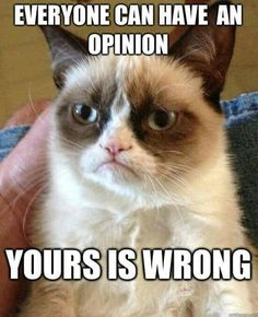 Grumpy Cat never gets old, so why not respond to your most annoying e-mails with the most intolerant cat around.