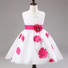 White & Magenta Floral A-Line Dress, 3% discount @ PatPat Mom Baby Shopping App
