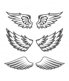 Illustration of wings collection set Premium Vector Summer Coloring Pages, Cars Coloring Pages, Wing Tattoo Designs, Angel Tattoo Designs, Small Wing Tattoos, Tattoo Mama, Tribal Lion, Wings Drawing, Tribal Sleeve Tattoos