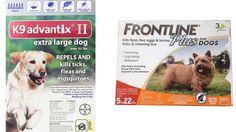 Top 5 Best Flea Medicine for Dogs Reviews Best Flea and Tick Medicine for Dogs