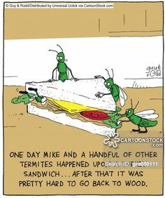 One day Mike and a handful of other termites happened upon a turkey sandwich,,, after that it was pretty hard to go back to wood,