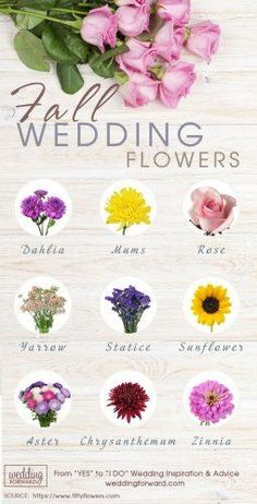 36 Fall Wedding Bouquets For Autumn Brides Fall has perhaps the greatest palette for your wedding flowers! See our gallery of fall wedding bouquets for more inspiration! Wedding Flower Guide, Purple Wedding Flowers, Fall Wedding Colors, Fall Flowers, Autumn Wedding, Orange Wedding, Wedding Ideas, Flowers Uk, Cheap Flowers